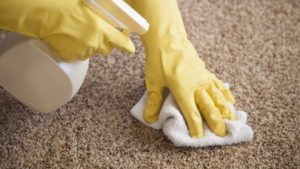end of lease carpet cleaning dinmore